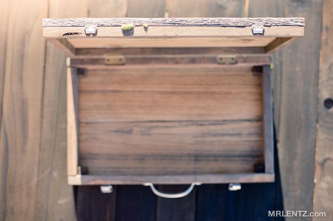 Briefcase01b_0058.jpg
